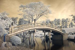 Japanese Style Bridge and Gardens in Singapore by Cheoh Wee Keat