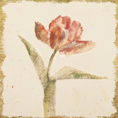 Vintage Flaming Parrot Tulip Crop by Cheri Blum