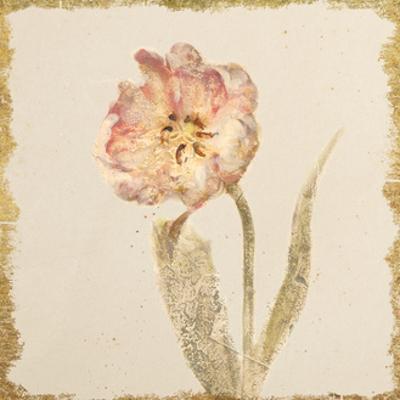 Vintage May Wonder Tulip Crop by Cheri Blum