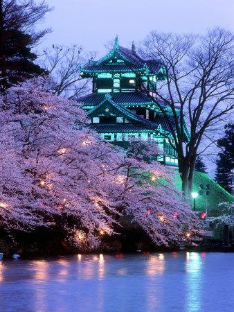 https://imgc.allpostersimages.com/img/posters/cherry-blossoms_u-L-Q10VY5I0.jpg?artPerspective=n