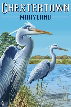 https://imgc.allpostersimages.com/img/posters/chestertown-maryland-blue-herons-in-marsh_u-L-Q1GQPFC0.jpg?p=0