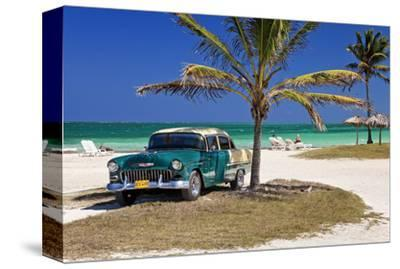 Chevrolet Classic Car under a Palm Tree on the Beach of the Island of Cayo Coco, Cuba
