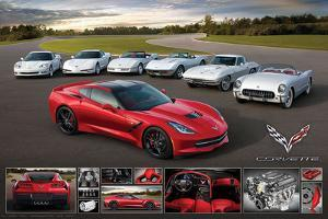 Chevrolet: Corvette- Stingray Family