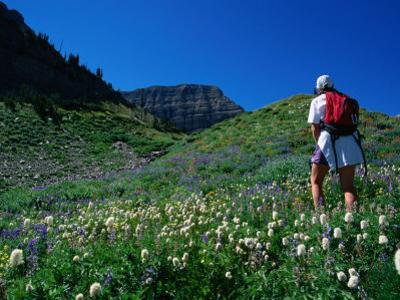 Hiking Mt. Timpanogos in the Wasatch National Forest, Utah, USA by Cheyenne Rouse