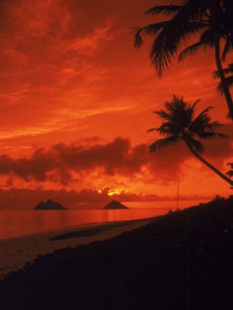 Sunrise, Lanikai Oahu, Hawaii by Cheyenne Rouse
