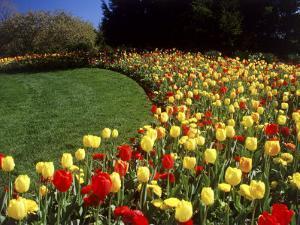 Chicago Botanic Garden, Illinois, USA