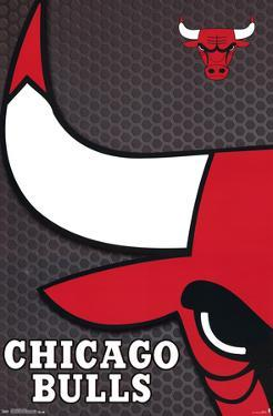 Chicago Bulls - Logo 14