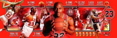 Chicago Bulls - Michael Jordan Panoramic Photo