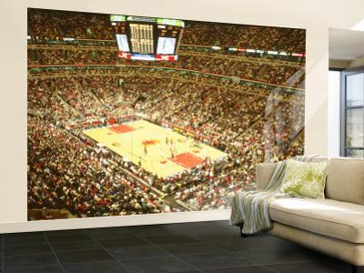 Affordable Sports Wall Murals Posters for sale at AllPosterscom