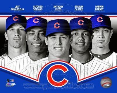 Chicago Cubs 2013 Team Composite