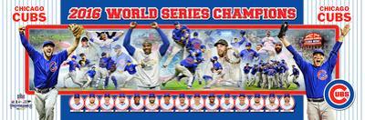Chicago Cubs 2016 World Series Champions Photoramic