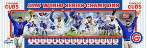 Chicago Cubs 2016 World Series Champions Photoramic