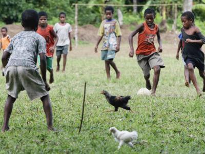Chickens Run to Avoid a Soccer Game Played by Children from Lolovoli Village on the Island of Ambae