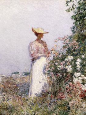 Lady in Flower Garden by Childe Hassam