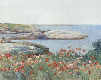 Poppies, Isles of Shoals, 1891 by Childe Hassam
