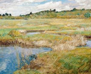 The Concord Meadow, Concord, Massachusetts by Childe Hassam