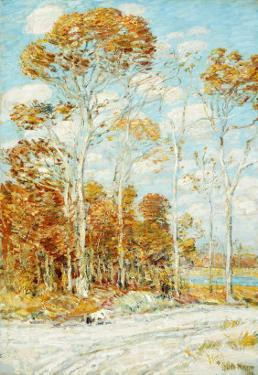 The Hawk's Nest, 1904 by Childe Hassam