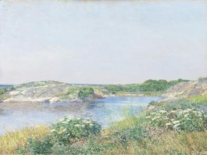 The Little Pond, Appledore, 1890 by Childe Hassam