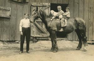 Children on Back of Draft Horse