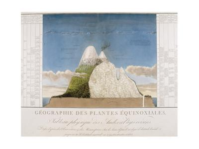 Chile. Physical Map of the Andes by Alexander Humboldt