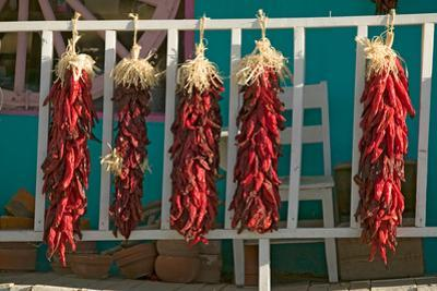 Chili Peppers on Mescalero Apache Indian Reservation near Ruidoso and Alto, New Mexico