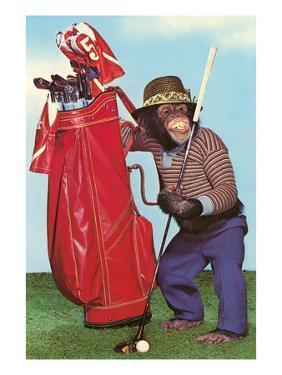 Chimp with Golf Bag