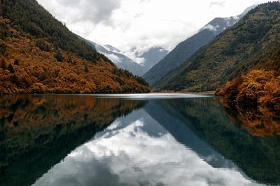 https://imgc.allpostersimages.com/img/posters/china-10mkm2-collection-rhinoceros-lake-jiuzhaigou-national-park_u-L-PZ7PXS0.jpg?p=0