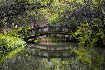 https://imgc.allpostersimages.com/img/posters/china-10mkm2-collection-romantic-bridge_u-L-PZ7F6A0.jpg?p=0