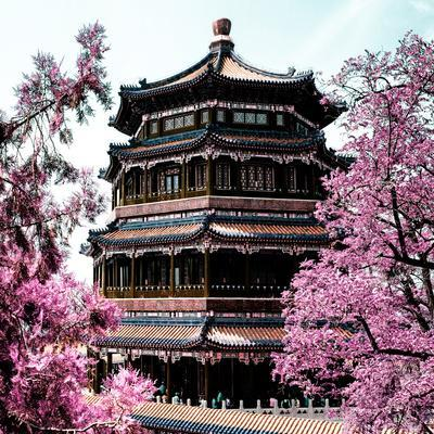 https://imgc.allpostersimages.com/img/posters/china-10mkm2-collection-summer-palace-temple_u-L-PZ7N1P0.jpg?p=0