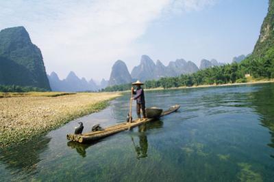 China Fisherman with Cormorant Birds on Li River