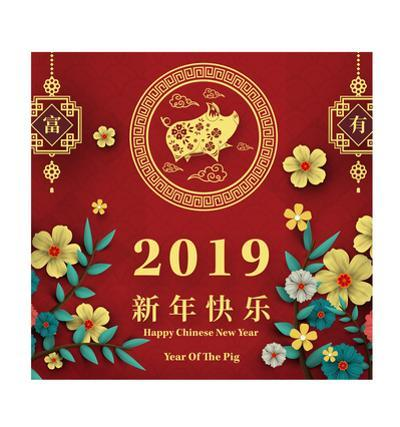 Chinese New Year - Pig Backdrop