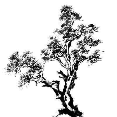 https://imgc.allpostersimages.com/img/posters/chinese-traditional-ink-painting-pine-tree-on-white-background_u-L-PN0BTI0.jpg?p=0