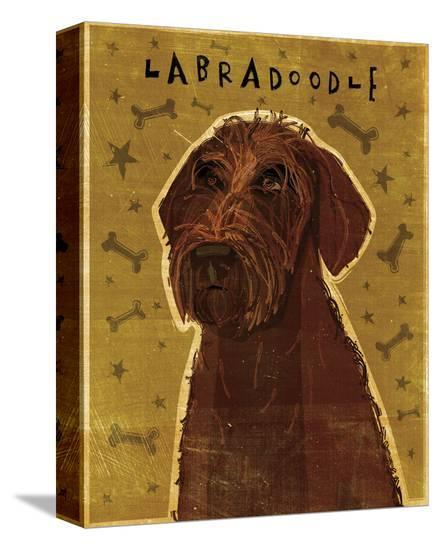 Chocolate Labradoodle-John Golden-Stretched Canvas Print