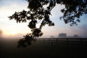 A Misty Dawn over a Rural Scene in Loudon County, Virginia by Chris Bickford