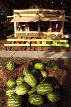 An Outdoor Vegetable Stand in Duck, North Carolina by Chris Bickford