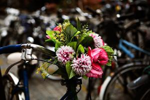 Flowers Attached to a Bicycle in Paris, France by Chris Bickford