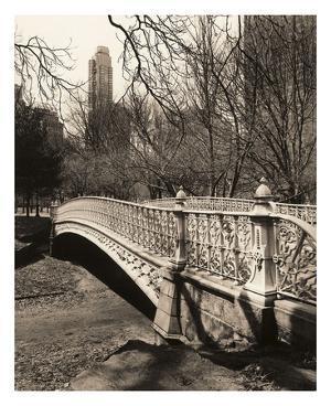 Central Park Bridges 2 by Chris Bliss