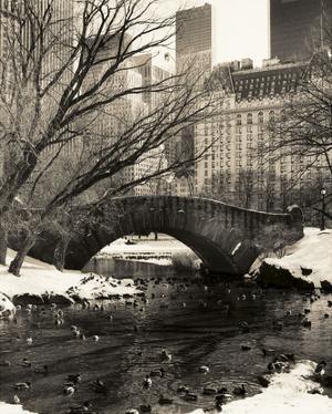 Central Park Bridges 4 by Chris Bliss