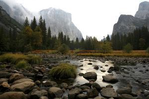 Yosemite by Chris Bliss