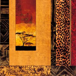 African Studies I by Chris Donovan