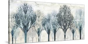 The Grove by Chris Donovan