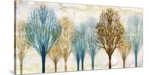 Treelined by Chris Donovan