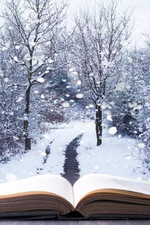 Open Book with Winter Woodland Background and falling Snow by Chris_Elwell