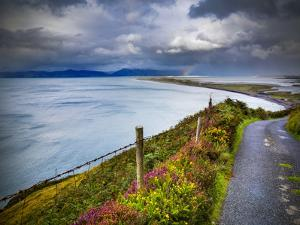 A Country Road Down to Rossbeigh in County Kerry by Chris Hill