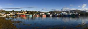 Castletown Bearhaven Harbour in Beara, Cork by Chris Hill