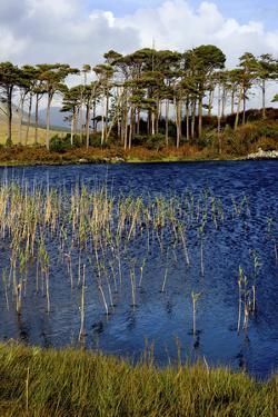 Derryclare Lough in Connemara, Ireland by Chris Hill