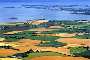 Fields in Late Summer Along North Down Strangford Lough, County Down, Northern Ireland by Chris Hill