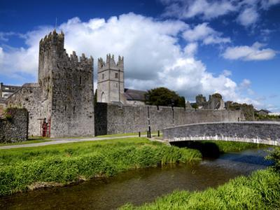 Holy Trinity Church and Augustinian Abbey at Fethard in Tipperary, Ireland by Chris Hill