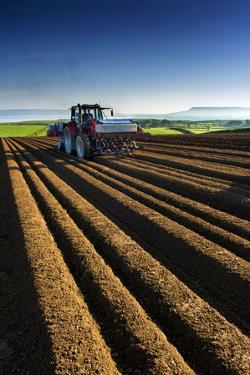 Potato Farming in Northern Ireland by Chris Hill