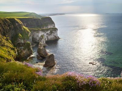 Rugged coastline with wild flowers. by Chris Hill